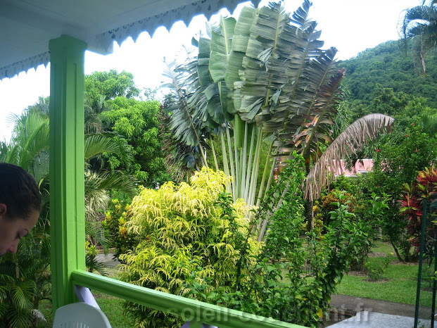 Holidays Lodges Accomodation To Rent In Guadeloupe